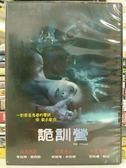 影音專賣店-H02-041-正版DVD【關鍵危機】-瑞絲薇斯朋*傑克葛倫霍爾