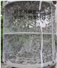 捕捉器實用環保捕蠅器滅蠅器折疊式捕蠅籠