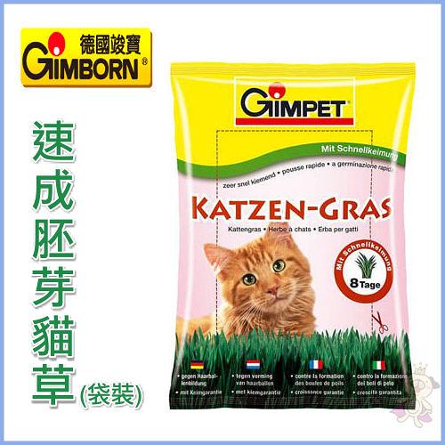 『寵喵樂旗艦店』德國GIMPET竣寶《速成胚芽貓草-袋裝》容易種只需8天
