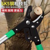 修枝剪修剪樹枝果樹剪刀粗枝剪園藝大力剪樹剪子省力園林工具 js2166『科炫3C』