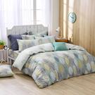 鴻宇 四件式雙人兩用被床包組 瓦妮莎 美國棉授權品牌 台灣製2157