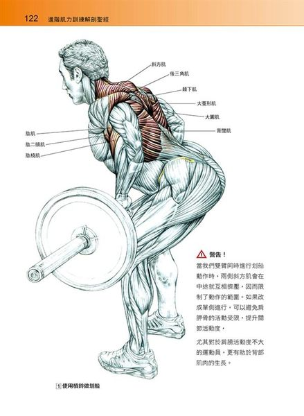 進階肌力訓練解剖聖經(附健美肌肉解剖圖海報)