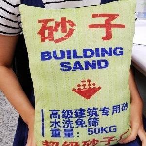 ♥巨安網購♥【106080220】創意仿真沙子枕頭 可愛抱枕  靠墊 沙子靠枕