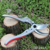 修枝剪果樹粗枝剪花剪園林修剪樹枝園藝剪刀 探索先鋒