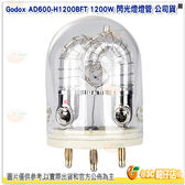 神牛 Godox AD600-H1200BFT 1200W 閃光燈燈管 公司貨 燈管 AD600