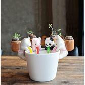 ⓒ輕鬆療育❤可愛小動物吸管吸水盆栽(贈種子&育苗磚塊) 辦公室盆栽【BI06001】