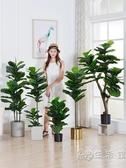 北歐仿真琴葉榕盆栽植物室內擺件綠植大盆景假花ins家居客廳裝飾 WD 小時光生活館