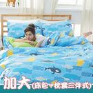 純棉【鯨向海】雙人加大三件式床包+枕套組...