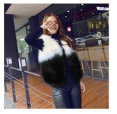 新款仿狐貍毛皮草馬甲女冬短款韓版顯瘦修身毛外套 萬客居