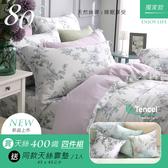 【限時買再送同款靠墊1入】鴻宇 雙人床包薄被套組 天絲400織 安葛絲 台灣製2205