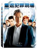 重返犯罪現場 第5季 DVD NCIS Season 5 免運 (購潮8)