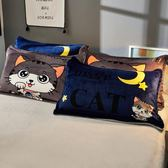 雙十二狂歡 冬季法萊絨枕頭套一對裝保暖珊瑚絨學生宿舍加厚法蘭絨枕套枕芯套 挪威森林