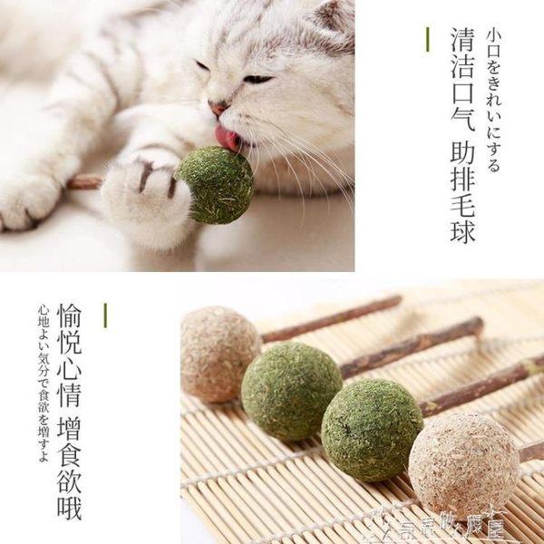 貓咪棒棒糖貓薄荷棒棒糖貓咪玩具磨牙棒潔齒逗貓棒木天蓼貓咪用品 奇思妙想屋