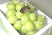 ((德記水果禮盒))日本岡山縣晴王綠葡萄大串一串裝