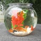 魚缸 金桌面透明塑膠鼓圓形打不破辦公室觀...