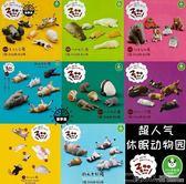 扭蛋 多美TOMY日本人氣 動物扭蛋/熊貓之穴 萌睡姿 寢睡ZOO休眠動物園 二度3C