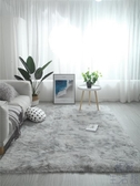 地毯客廳茶幾臥室可愛床邊毛毯地墊子大面積【極簡生活】