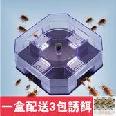 滅蟑螂屋膠餌粉捕捉器強力滅蟑清家用無毒全窩端誘捕器抓小強神器 東京衣櫃