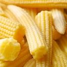 ㊣盅龐水產◇冷凍玉米筍◇重量1kg±5%/包◇零$130/包◇ 鮮甜可口 蔬菜 歡迎零售團購批發