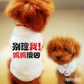 寵物衣服小型狗幼犬貓咪春夏服裝泰迪貴賓比熊棉質薄款文字Polo衫【全館好康85折】