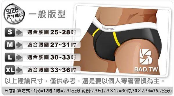 奢華壞男《型男側邊網狀設計款三角泳褲》(黑色)【S / M / L】(內褲.三角褲.四角褲.丁字褲)