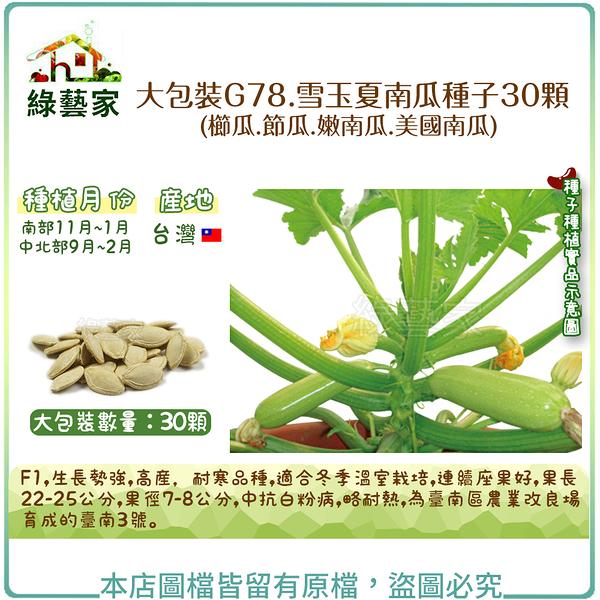 【綠藝家】大包裝G78.雪玉夏南瓜種子30顆((櫛瓜.節瓜.嫩南瓜.美國南瓜)