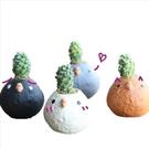 CARMO好養療育X發呆小雞水泥花盆套組 (贈土+多肉植物)【BI02001】