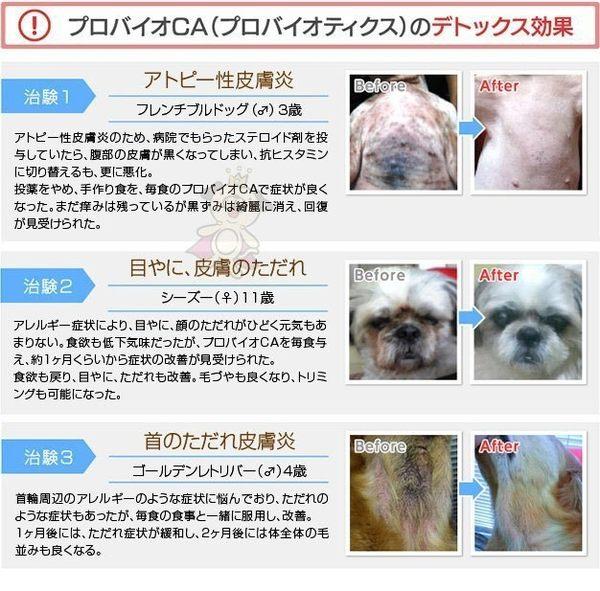 *WANG*PROBIO天然活力整腸粉/益生菌2克X30包-犬用
