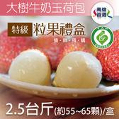 【家購網嚴選】大樹生產履歷冠軍牛奶玉荷包特級粒果禮盒2.5台斤(55~65顆)_型農推薦,低温配送