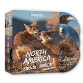 北美大地 無限生命  藍光BD  (音樂影片購)