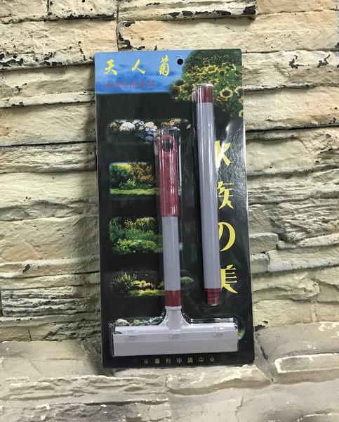 【西高地水族坊】雅柏代理天人菊不銹鋼大刮刀