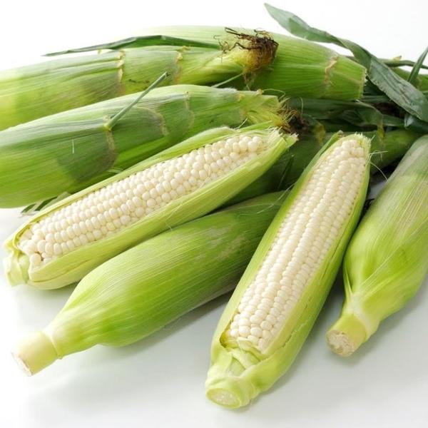 買1+1活動【果之蔬-全省免運】台灣北海道牛奶水果玉米-爆漿玉米-【買五支送五支】無農藥可生吃-