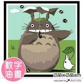DIY繪畫卡通龍貓數字油畫 20x20
