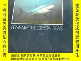 二手書博民逛書店OCEAN罕見LIFE BENEATH THE CRYSTAL