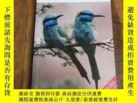 二手書博民逛書店Photographic罕見guide to Birds of