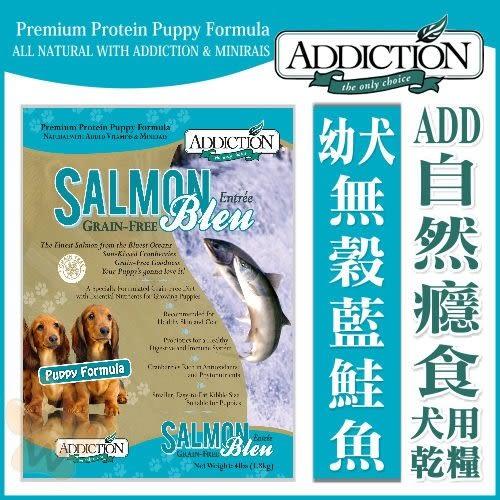 *KING WANG*Addiction自然癮食《無穀藍鮭魚》幼犬-1.81kg(效期:10月)