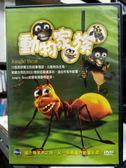 挖寶二手片-Y31-071-正版DVD-動畫【動物家族】-13個周詳獨立的故事情節 以動物為主角