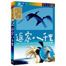 返家八千里-黑面琵鷺DVD...