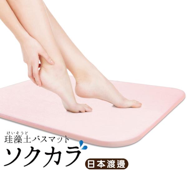 [買一送一] 日本渡邊 瞬效超吸水珪藻土腳踏墊/地墊 45X35cm