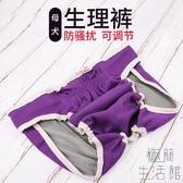 大狗生理褲大型犬寵物月經褲母狗姨媽巾衛生安全褲【極簡生活】