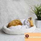 小寵物玩偶公仔睡覺小貓咪貓貓毛絨玩具模型可愛假貓咪【小獅子】