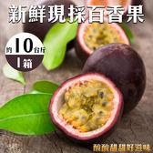 【果之蔬_全省免運】台灣嚴選百香果 (10台斤±10%/箱)