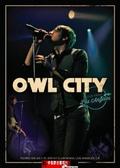【停看聽音響唱片】【DVD】貓頭鷹城市:洛杉磯演唱會