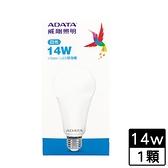 威剛 LED 球泡燈-白光(14W)【愛買】