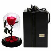永生花紅玫瑰-保鮮花浪漫情人節情人節禮物玫瑰花73pp402[時尚巴黎]