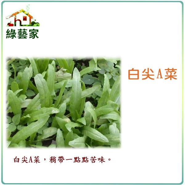 【綠藝家】大包裝A18.白尖A菜種子250克 (尖葉種)