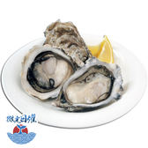 微光日燿 澎湖帶殼牡蠣 1kg (約12~16顆)