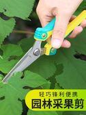 修果剪葡萄枝的專用剪刀采果翹頭稀果剪蔬果剪尖頭水果不銹鋼修枝 夏洛特