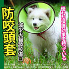 【 zoo寵物商城 】麥德豪》炫彩伊麗莎...