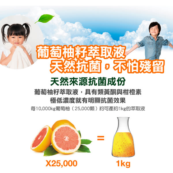 南僑水晶葡萄柚籽抗菌洗手液320g/瓶